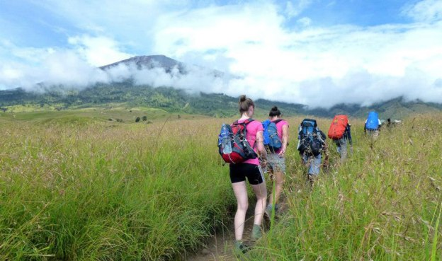 Savanna Sembalun Lawang altitude 1500 m of Mount Rinjani